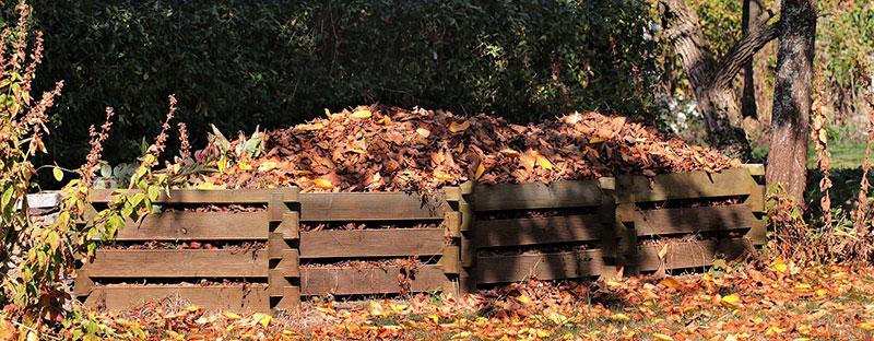 compost tas de feuilles