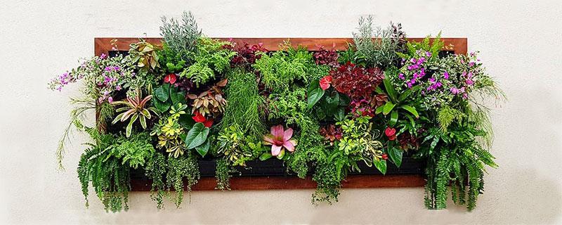 meilleure jardinière verticale
