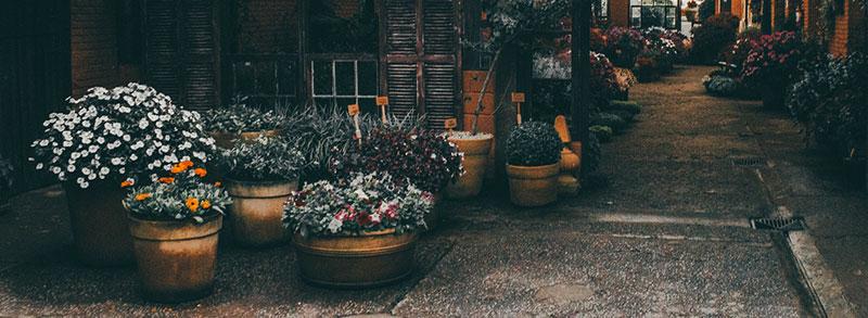 pot de fleurs xxl jardin