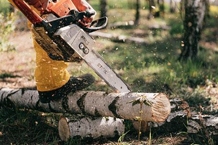 tronçonneuse coupe du bois