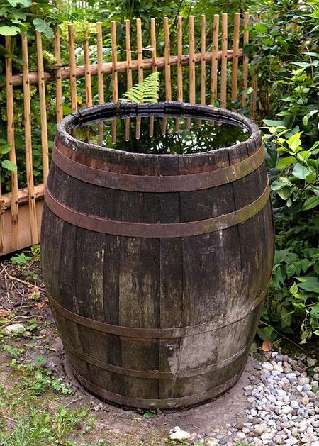 baril de vin pluie