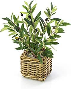 olivier décoration corbeille