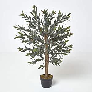 arbre à olive en pot