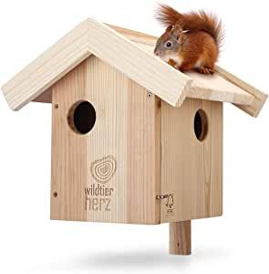 Nichoir en bois pour écureuil