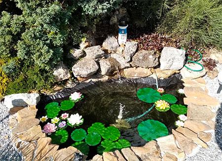 bache pour petit bassin à poisson