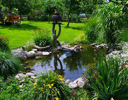 grand bassin de jardin
