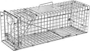 cage en métal pour attraper des fouines