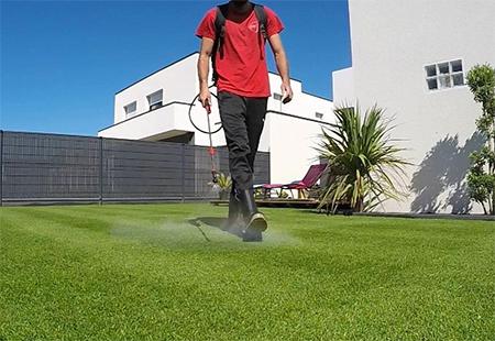 pelouse bien verte avec engrais