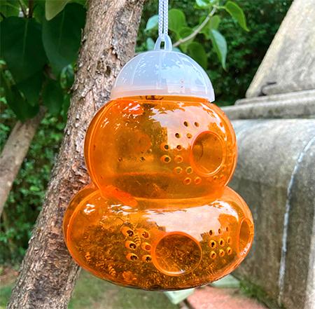 piege orange pour insectes ferlons et guepes